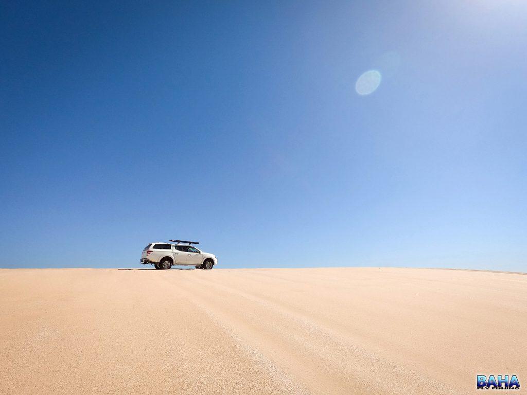 Exploring the Stockton dunes