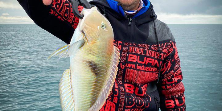 Two Days Fishing Moreton Bay