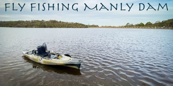 Fly Fishing Manly Dam – A Video