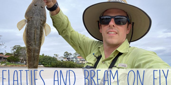 Flatties and Bream on Fly (A Video)