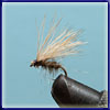 Elk Hair Caddis: Another very successful dry fly. I find it especially useful in the Bushman's River.
