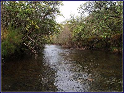 The Mooi River, Kamberg