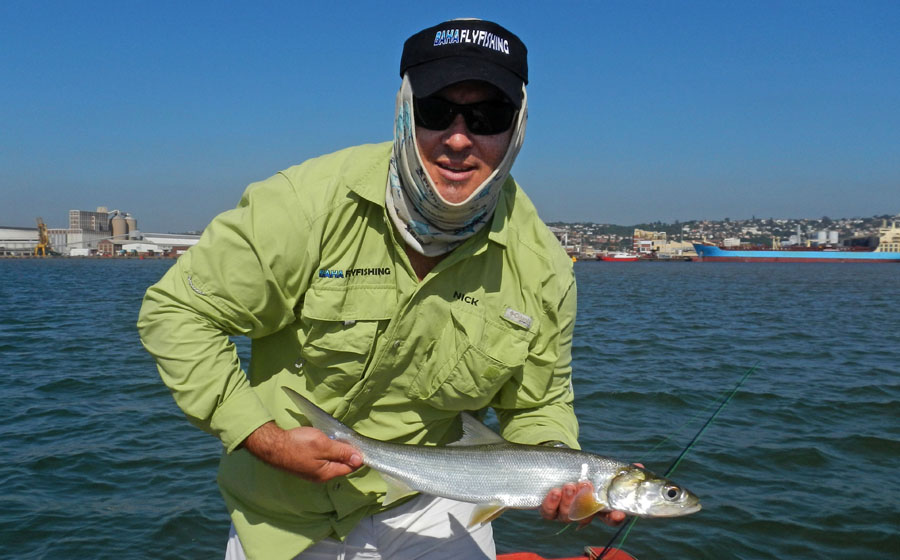 Nick With A Durban Harbour Springer